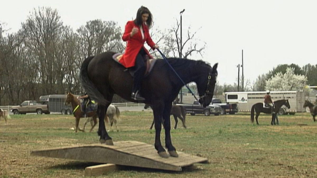 Nashville Mounted Patrol School on NPT's Tennessee Crossroads